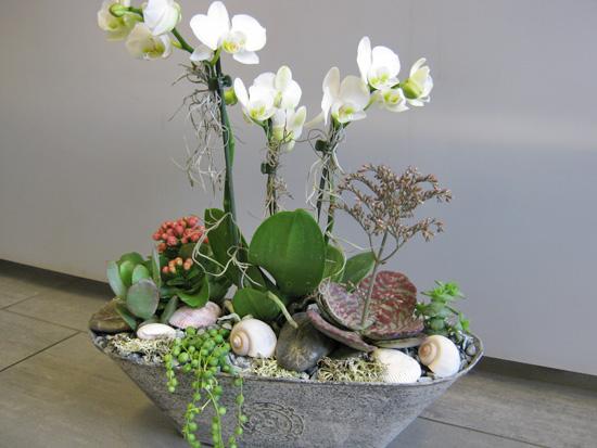 Infloribus blumengesch ft theres prassl illnau unser angebot - Orchideen arrangement ...